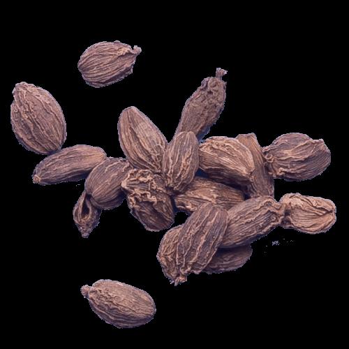 black cardamomcardamom blackblack cardamom pods